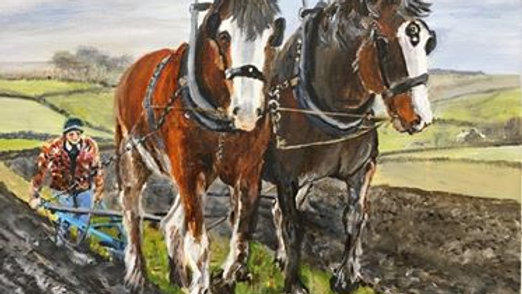 Clydesdale Ploughing- Painting