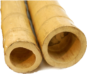 10ft (3.05m) 140-160mm diameter natural moso bamboo poles. 2 poles per pack