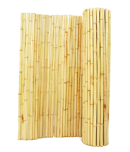 6ft (1.8m) Bamboo fence made up of 14 - 20mm diameter canes on a 16ft roll