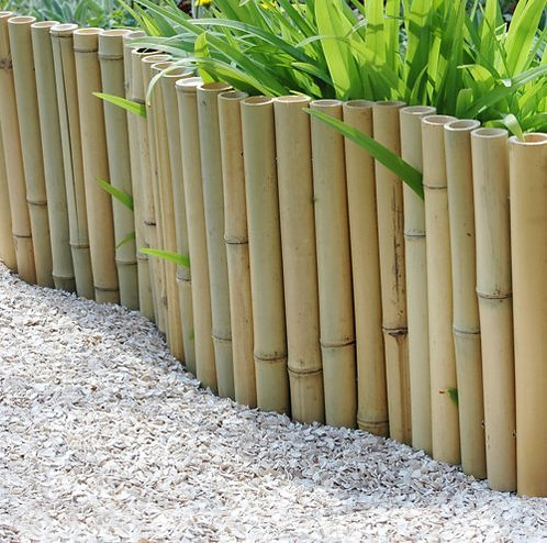 2ft (0.7 meters) Bamboo fence made up of 40-45mm diameter canes on a 5ft role.