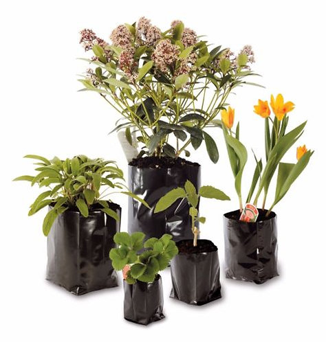 "'Polypot' Black Polythene Containers 6"" x 10"" x 10"" Holds 3ltr"