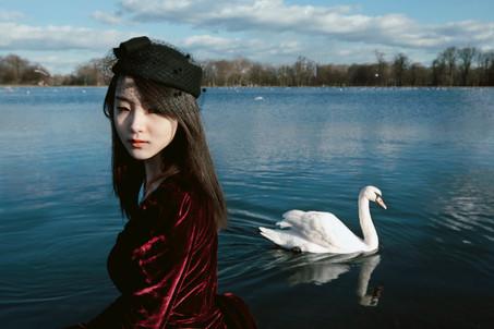 swan_dream copy.jpg