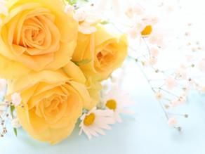 ヒプノセラピー東京3103のホームページを公開しました。