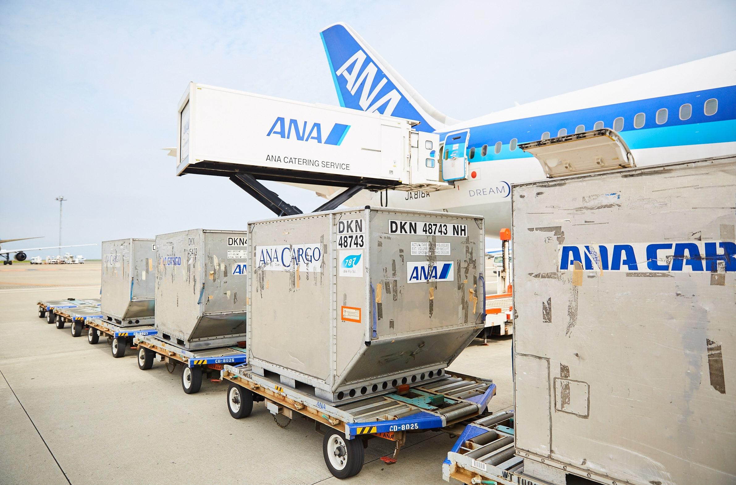 ANA貨物搬送業務