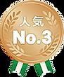 ホームページ制作プラン人気3位.png