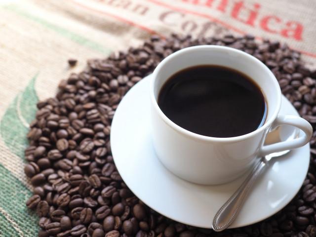 犬に食べさせてはいけない食べ物 コーヒー