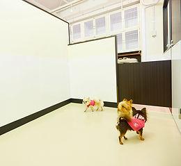 羽田空港 ペットふれあい広場