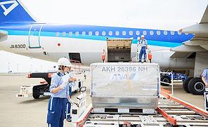 羽田空港で未経験OKの仕事