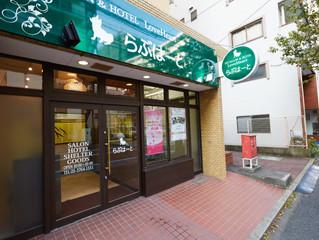 ペットサロン・ペットホテルらぶはーとを東京都品川区南大井にオープンしました!