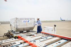 貨物搬送業務の様子