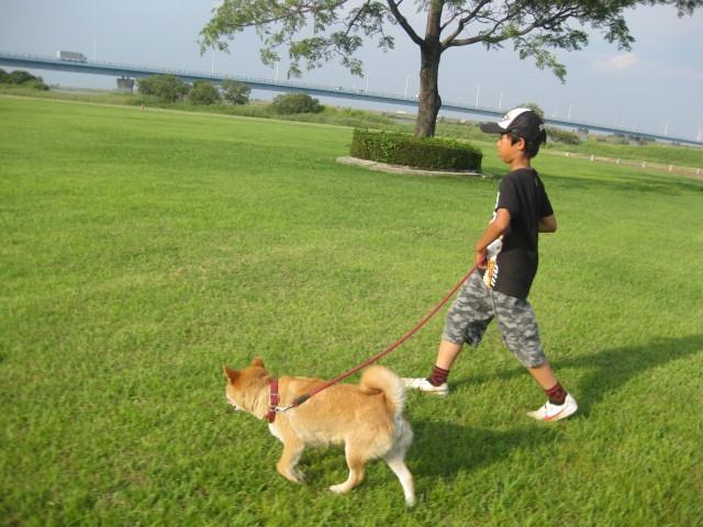 犬の散歩を楽しむ
