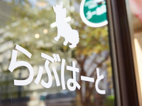東京都品川区、大田区のペットホテルです!部屋数が多くて予約が取りやすい。