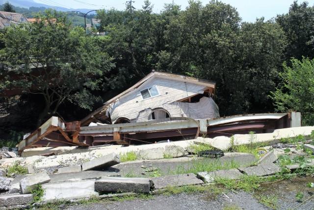 熊本地震とそこで生きる犬たち