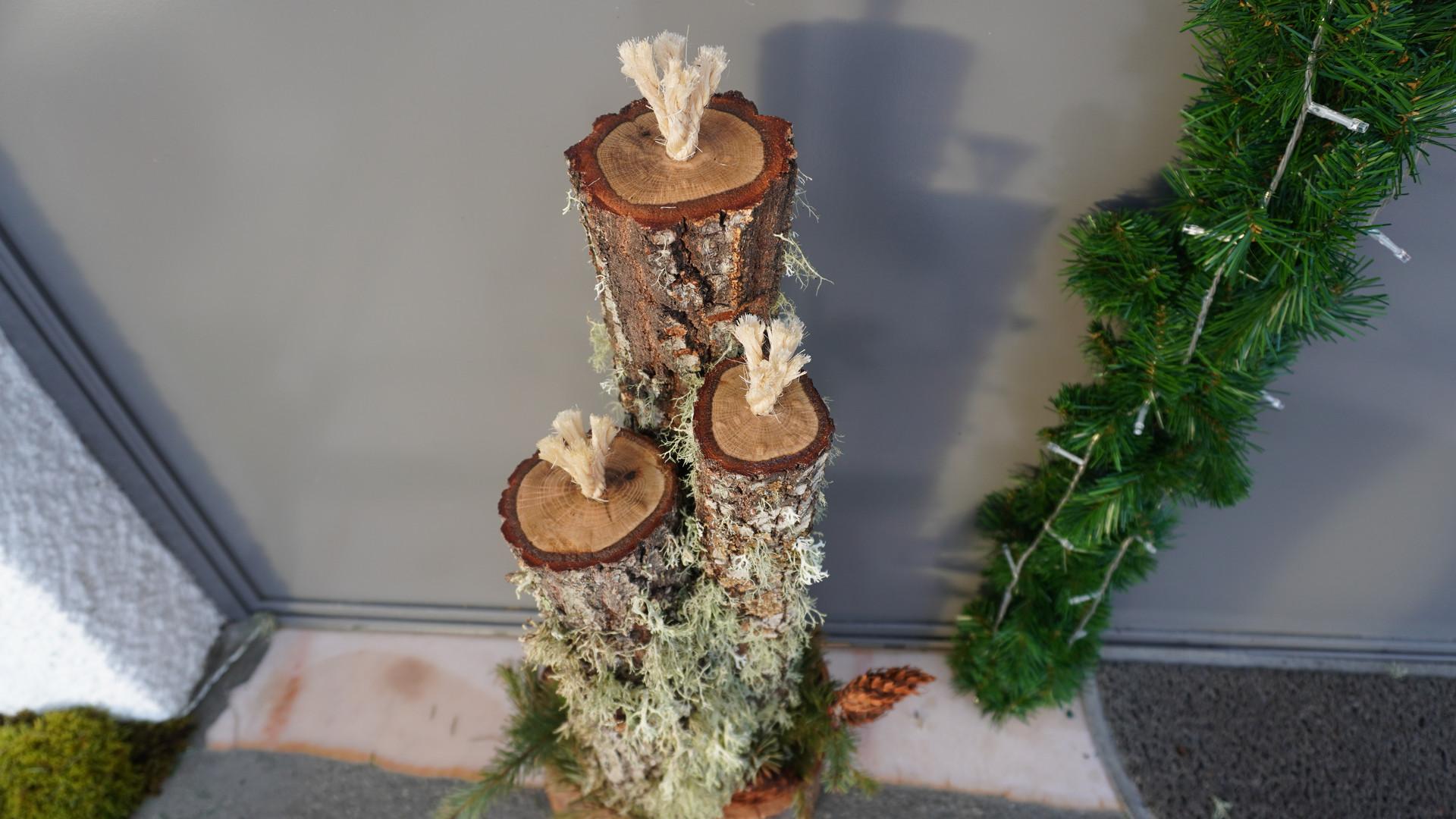 Três velas decorativas em troncos de madeira de carvalho