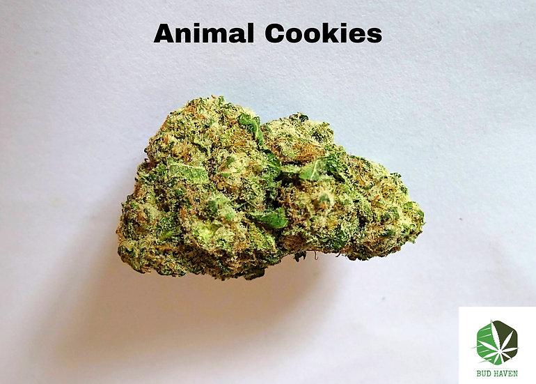 ANIMAL COOKIES (Hybrid) {$150/oz}