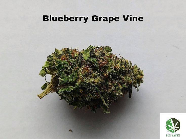 BLUEBERRY GRAPE VINE (Indica) {$200/oz}