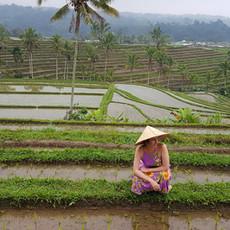Jatiluwih, o arrozal mais belo de Bali.