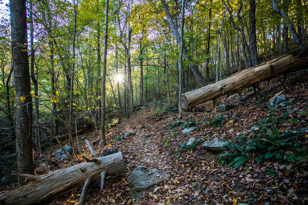 Shenandoah National Park, EEUU