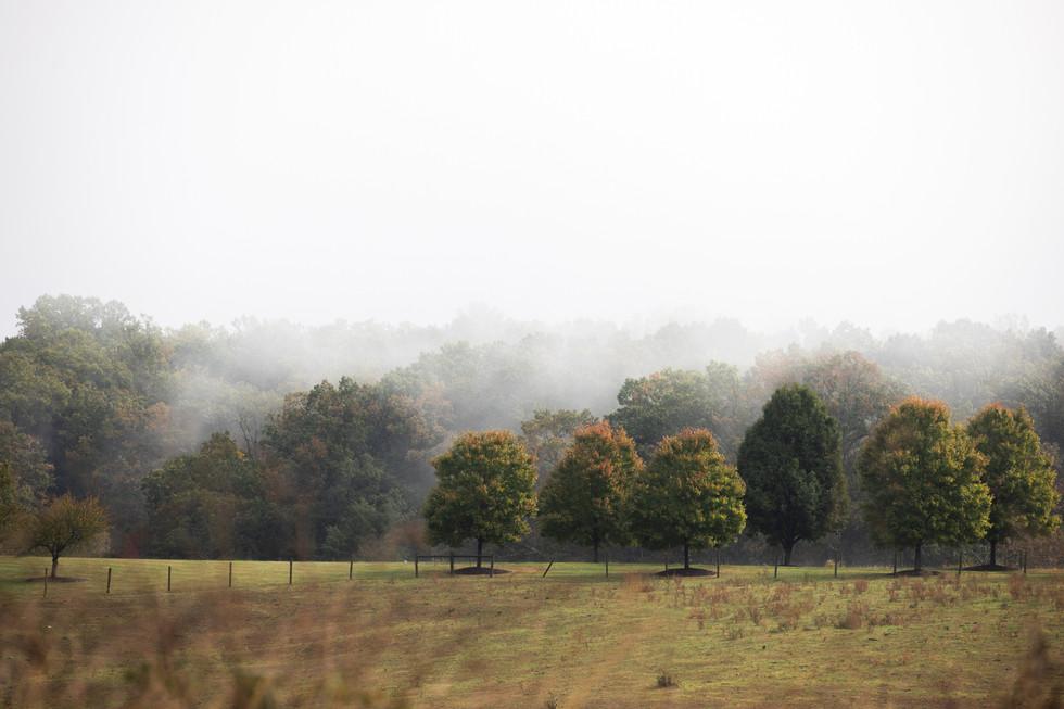 Charlottesville, EEUU