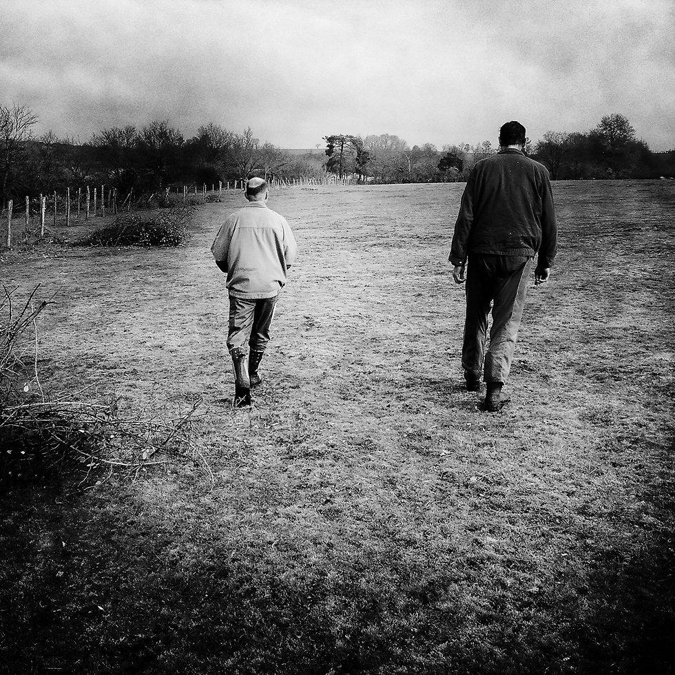 EricChauvet Steinbeck Tribute7.jpg