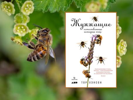 10 апреля: Онлайн-беседа «Естественная история пчел»
