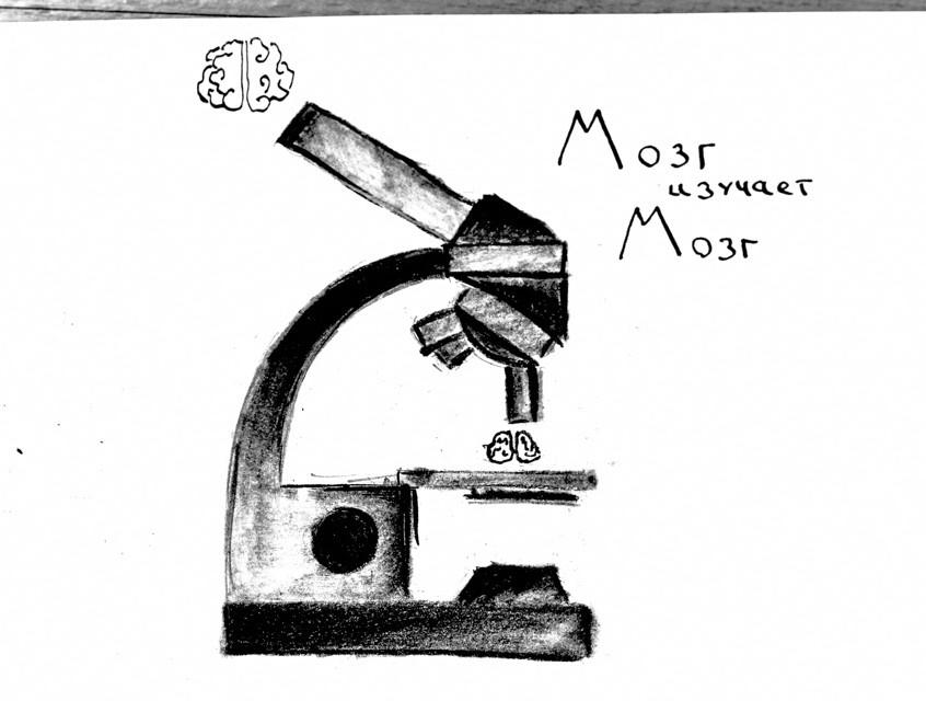 Nauchnaja-gostinaja-Fizika-i-matematika-mozga-3