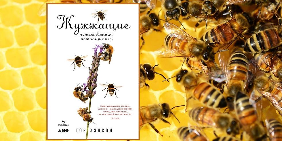 Онлайн-беседа «Естественная история пчел»
