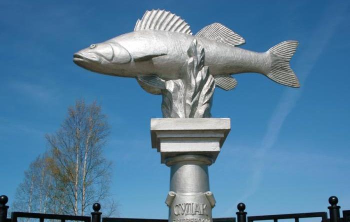 Памятник белозерскому судаку. Белозерск