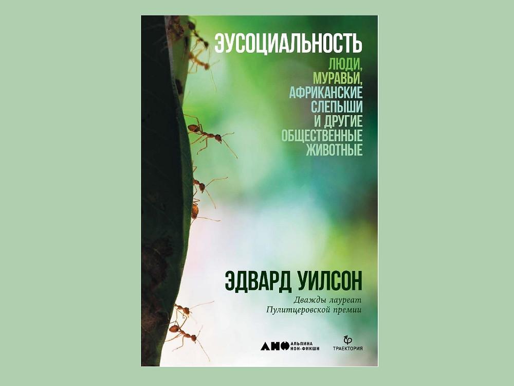 """Обложка книги Уилсона """"Эусоциальность"""""""