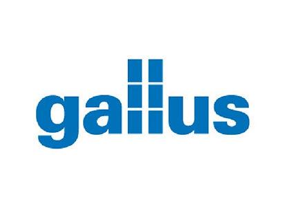 Gallus_555x403.jpg