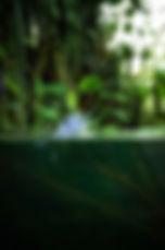 Snapseed (7).jpg