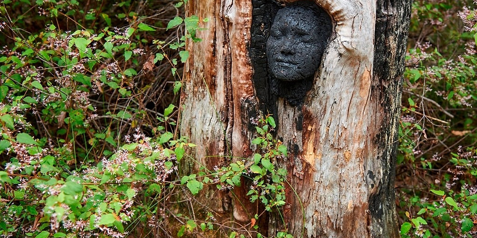 Understory Art in Nature Sculpture Trail