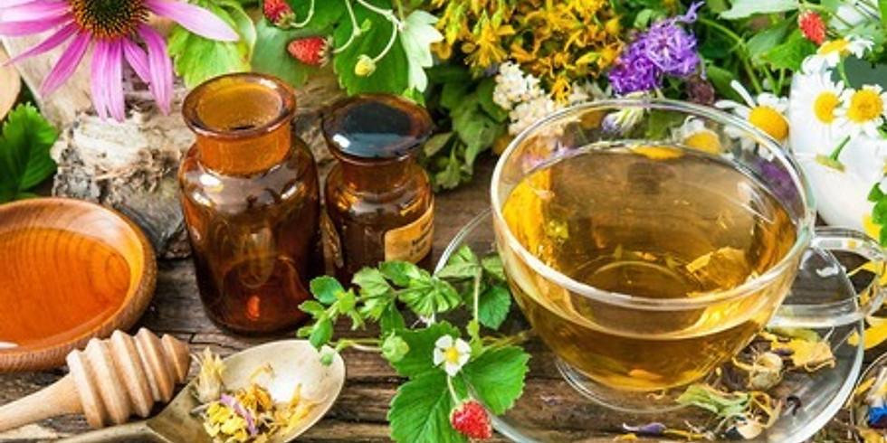Medicinal Herb Workshop