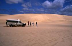 Pemberton Discovery Tours
