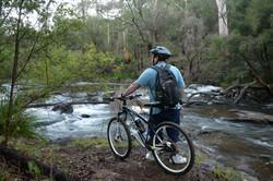 Mountain Bike Hire Pemberton