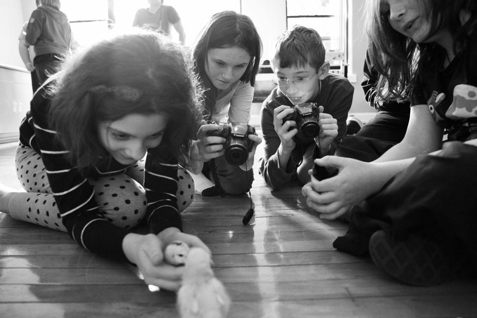 Budding photographers...