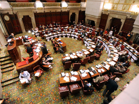 The Battle for Control of the State Senate - Are You Prepared for the Outcome?