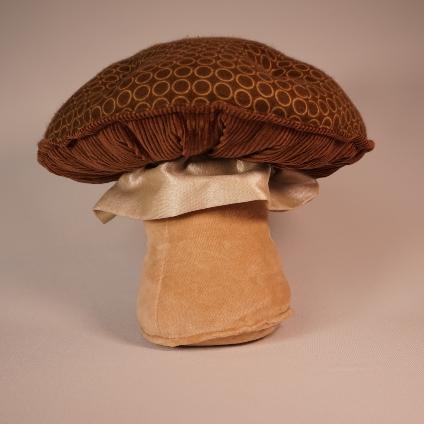 Chocolate dotty Mushroom 1