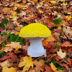 Autumn leaves mushroom yellow amanita