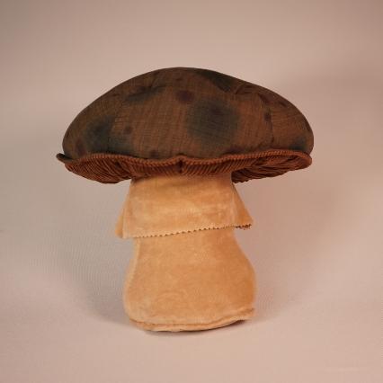 Dotty Mushroom 1