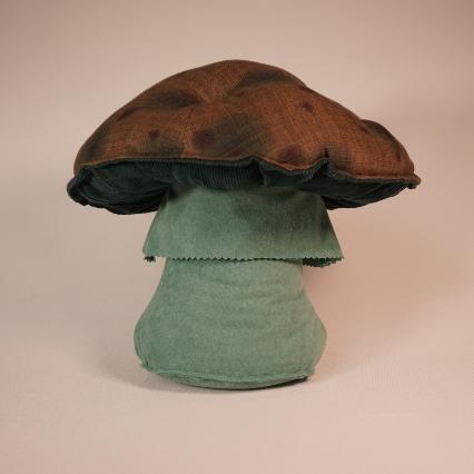 Dotty Mushroom 4