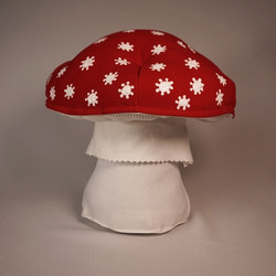 Red amanita muscaria 7