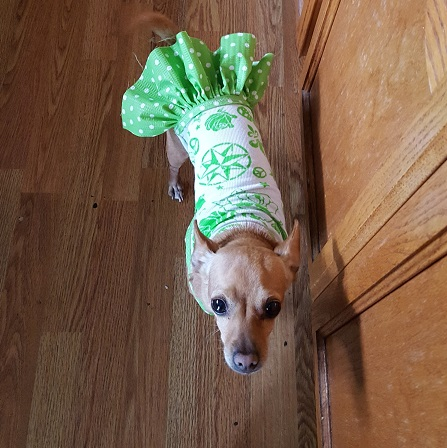 Miley in her green party dress