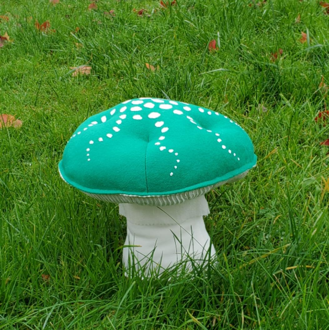 Grassy lawn mushroom green amanita