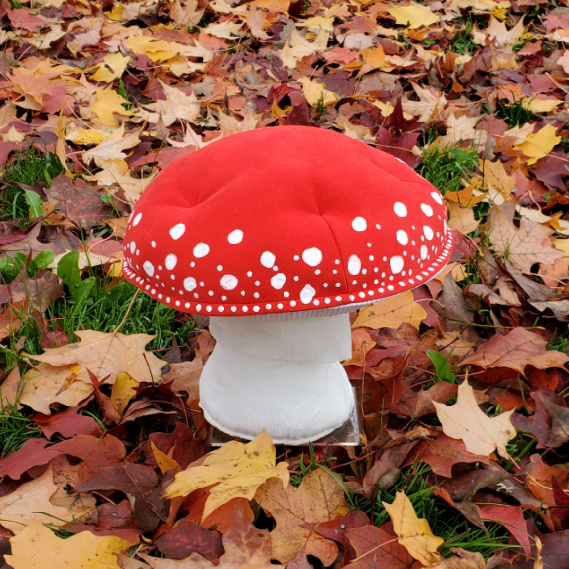 Autumn leaves mushroom red amanita