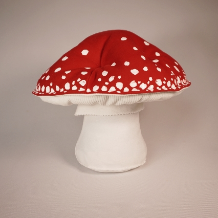 Red amanita muscaria 1
