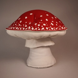 Red amanita muscaria 6