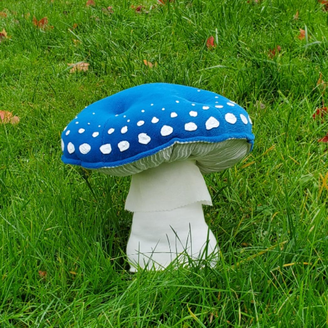 Grassy lawn mushroom blue amanita