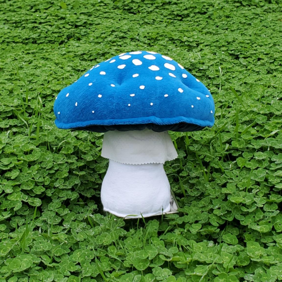Cloverfield mushroom blue amanita