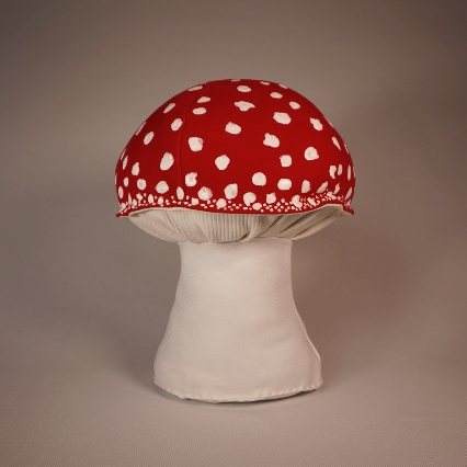 Red amanita muscaria 4